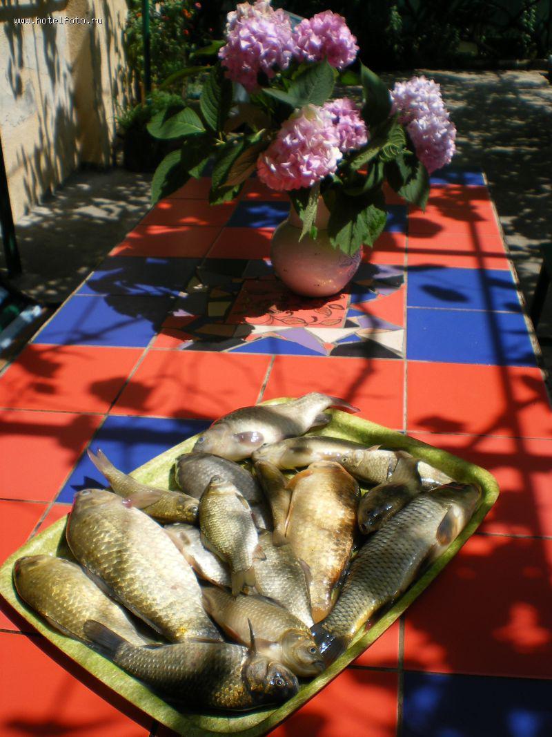 рыбалка в абхазии на озере